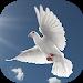Download Musica cristiana gratis APK